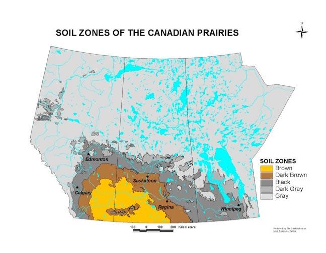 Desert ecosystem locations desert ecosystem diagram for Soil zones saskatchewan