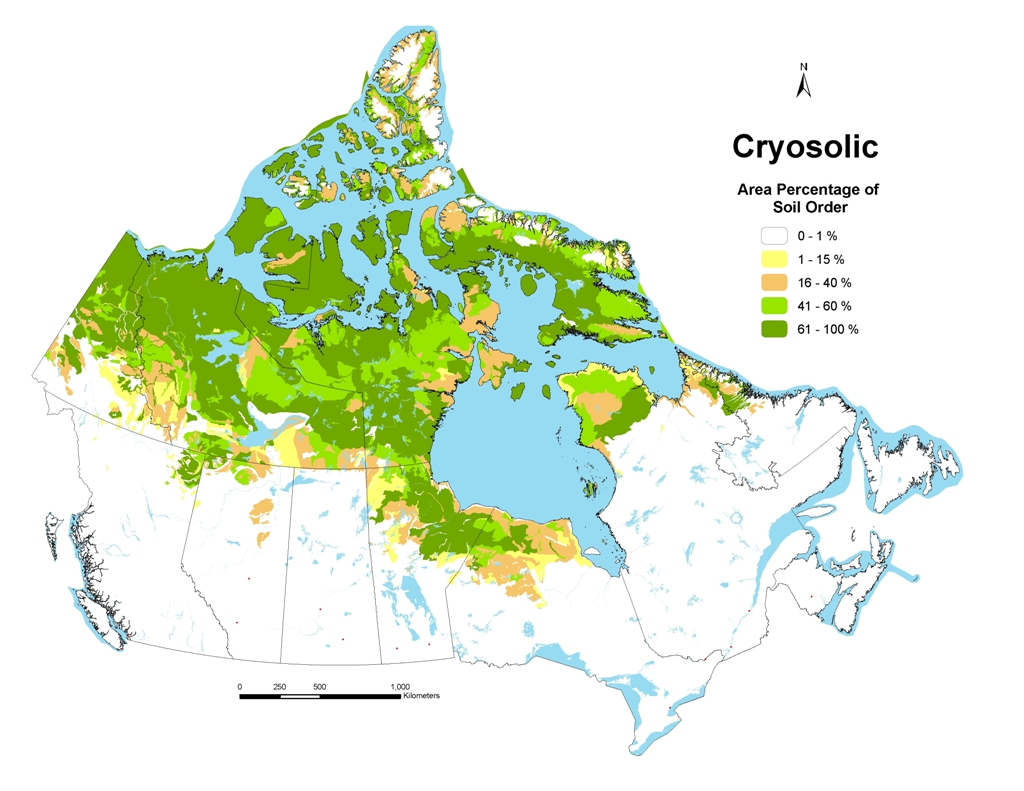 Cryosolic soils for Uses of soil in english
